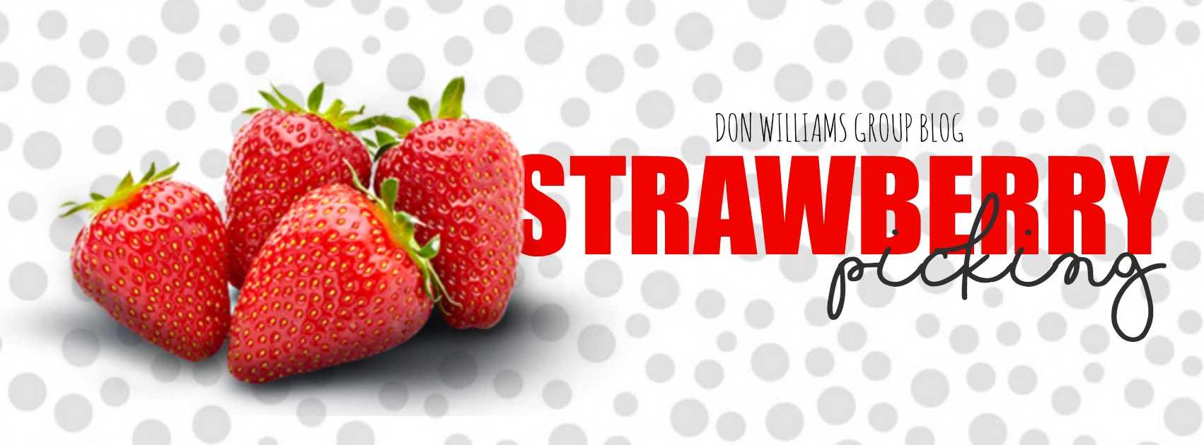 STRAWBERRY BLOG.jpg