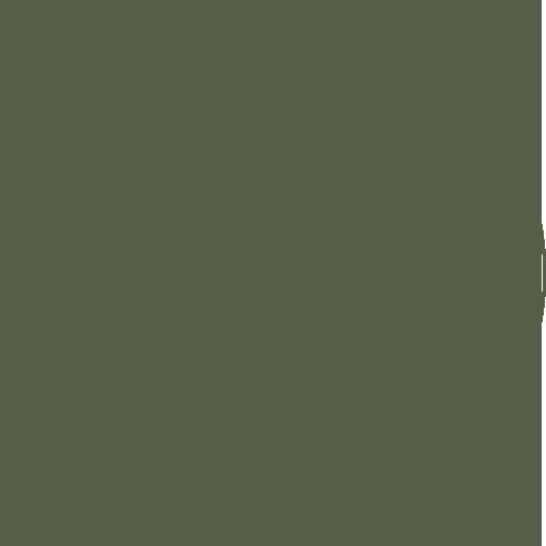rebecca_currie_logo_green_web.png