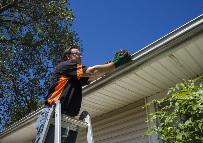 How to Clean and Inspect Your Gutters
