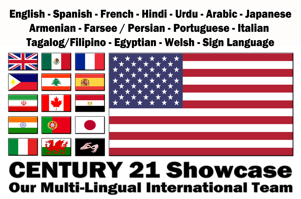multi lingual graphic.jpg