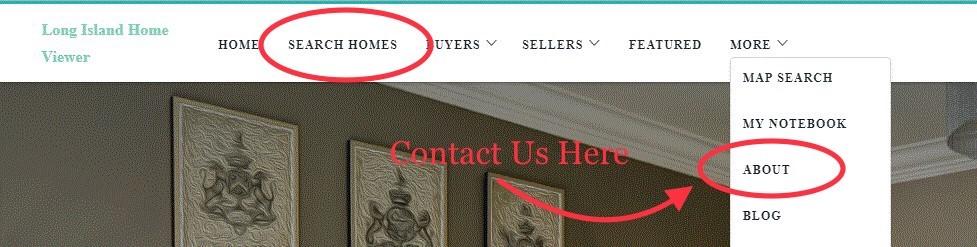 Website header edited use.jpg