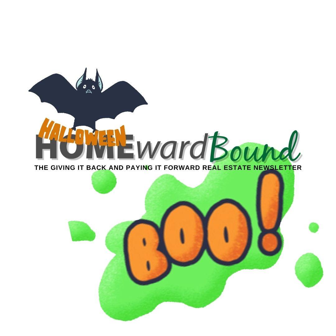 Homeward Bound Newsletter (Animated Social Media).jpg