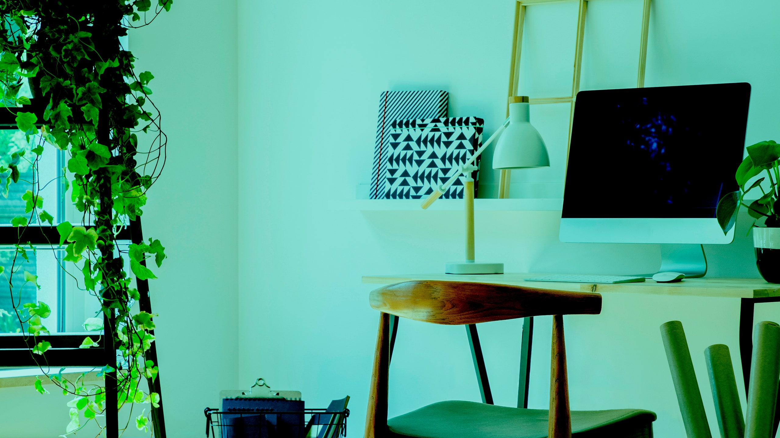 How to Set Up an Eco-Friendly Home Office You Won't Hate