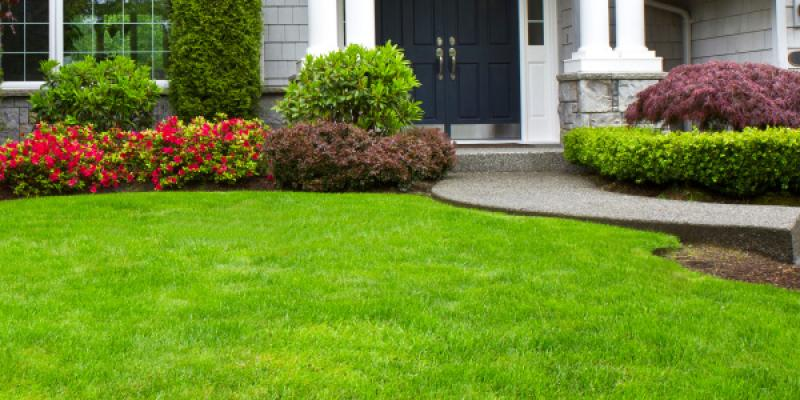 5 Tips for Prepping a Lawn for the Winter