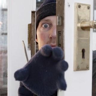 Burglar2Pic.jpg