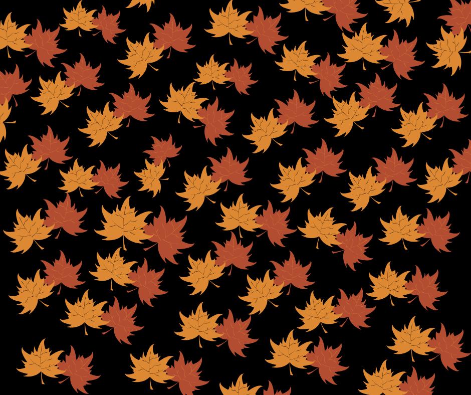 Fall In House Quarterly Newsletter