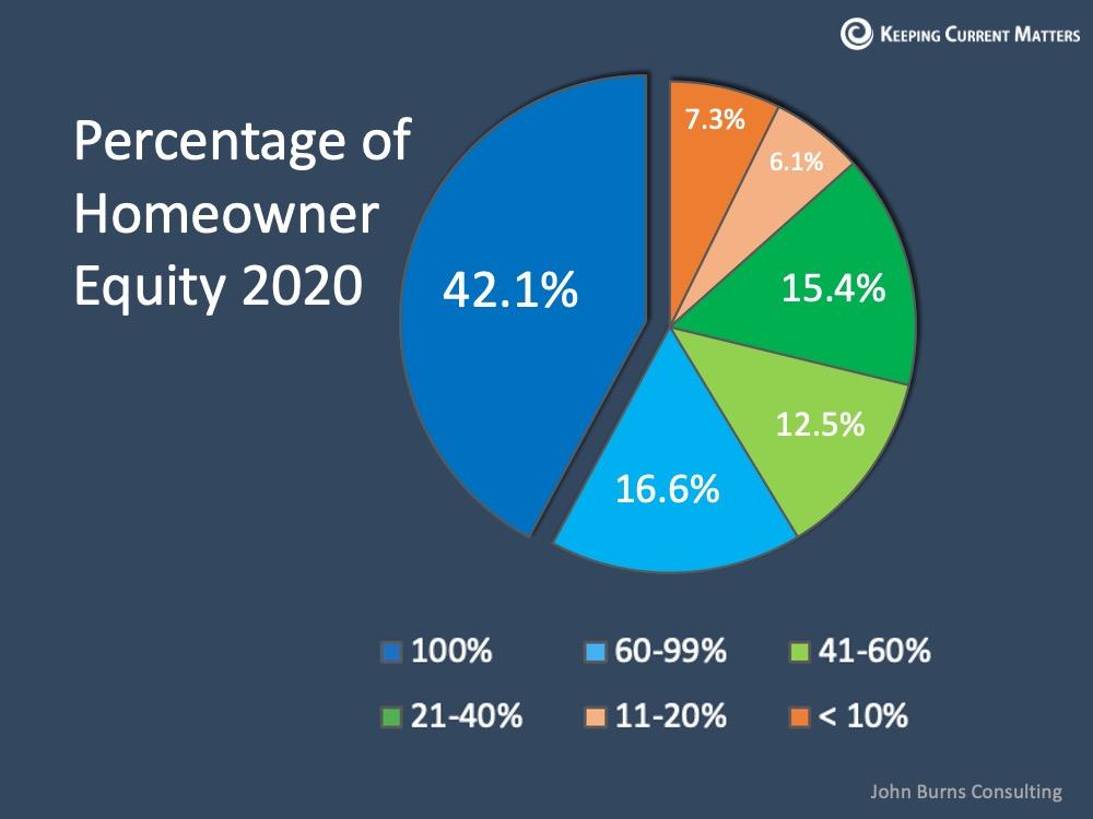 Homeowner Percentage.jpg