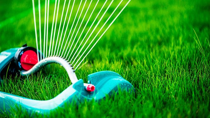 12 Genius Yard and Garden Maintenance Hacks to Simplify Your Summer