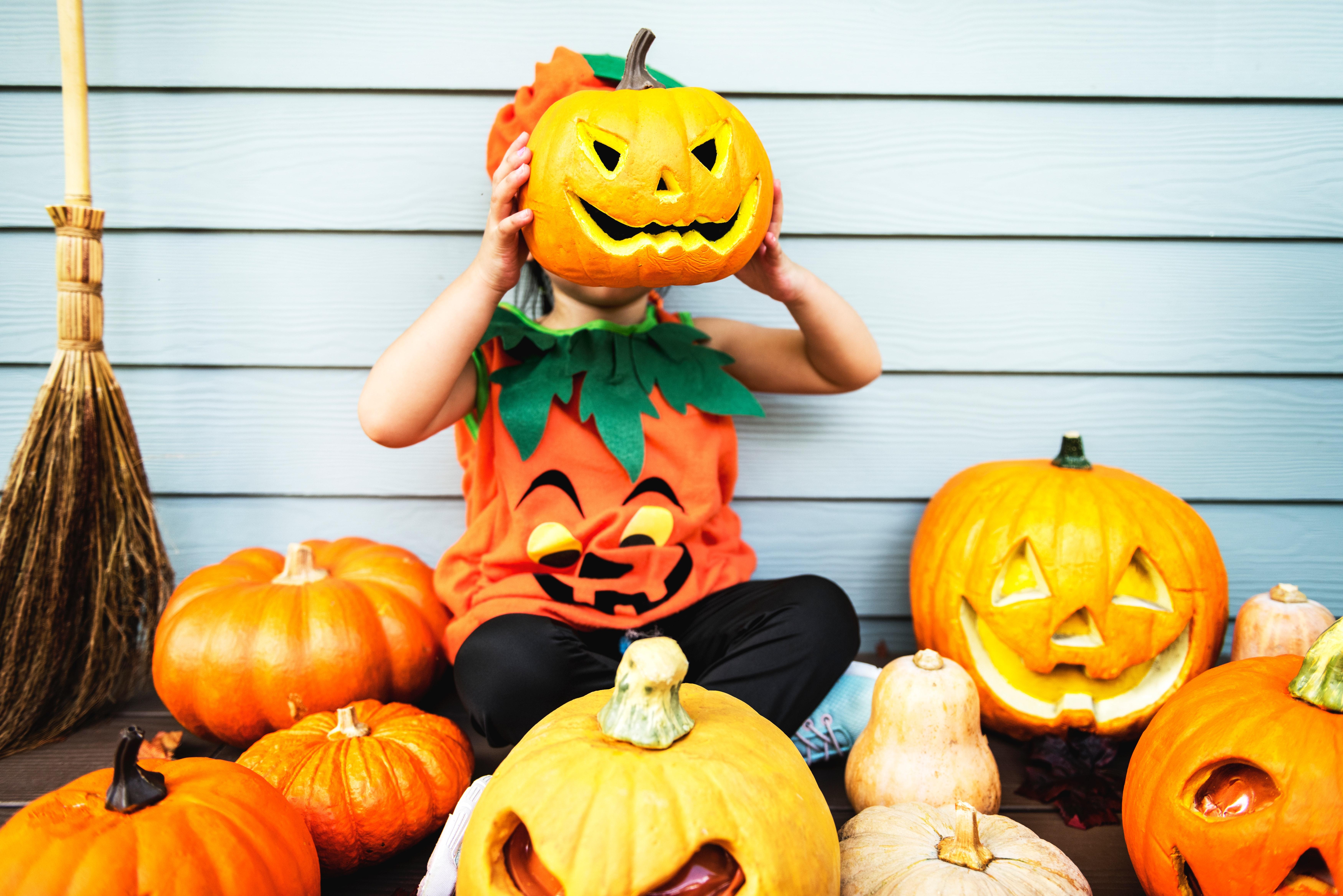 broom-carved-pumpkin-celebration-1484213.jpg