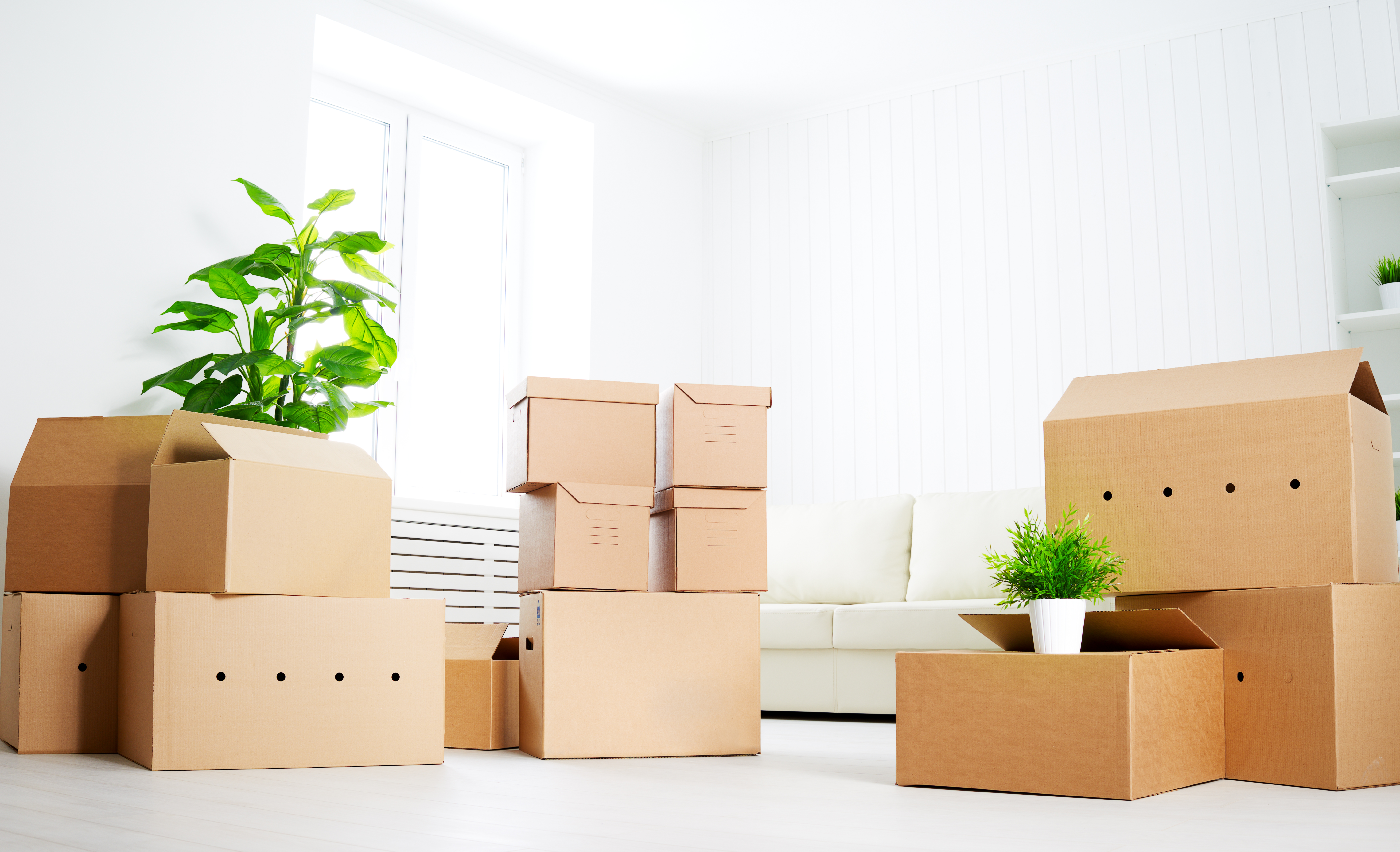 9 Things People Forget To Do Before They Move