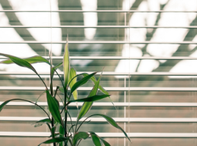 Tips from Our Resident Designer   Spring Cleaning Includes Your Window Blinds....