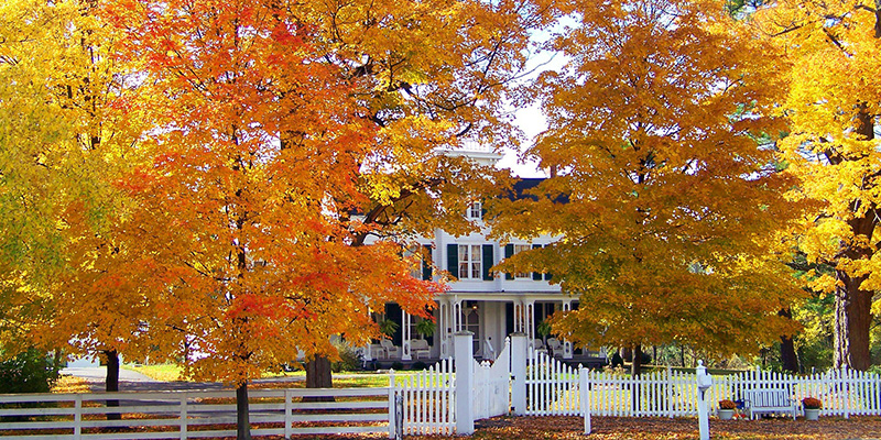 fall-scene-with-house-in-background.jpg