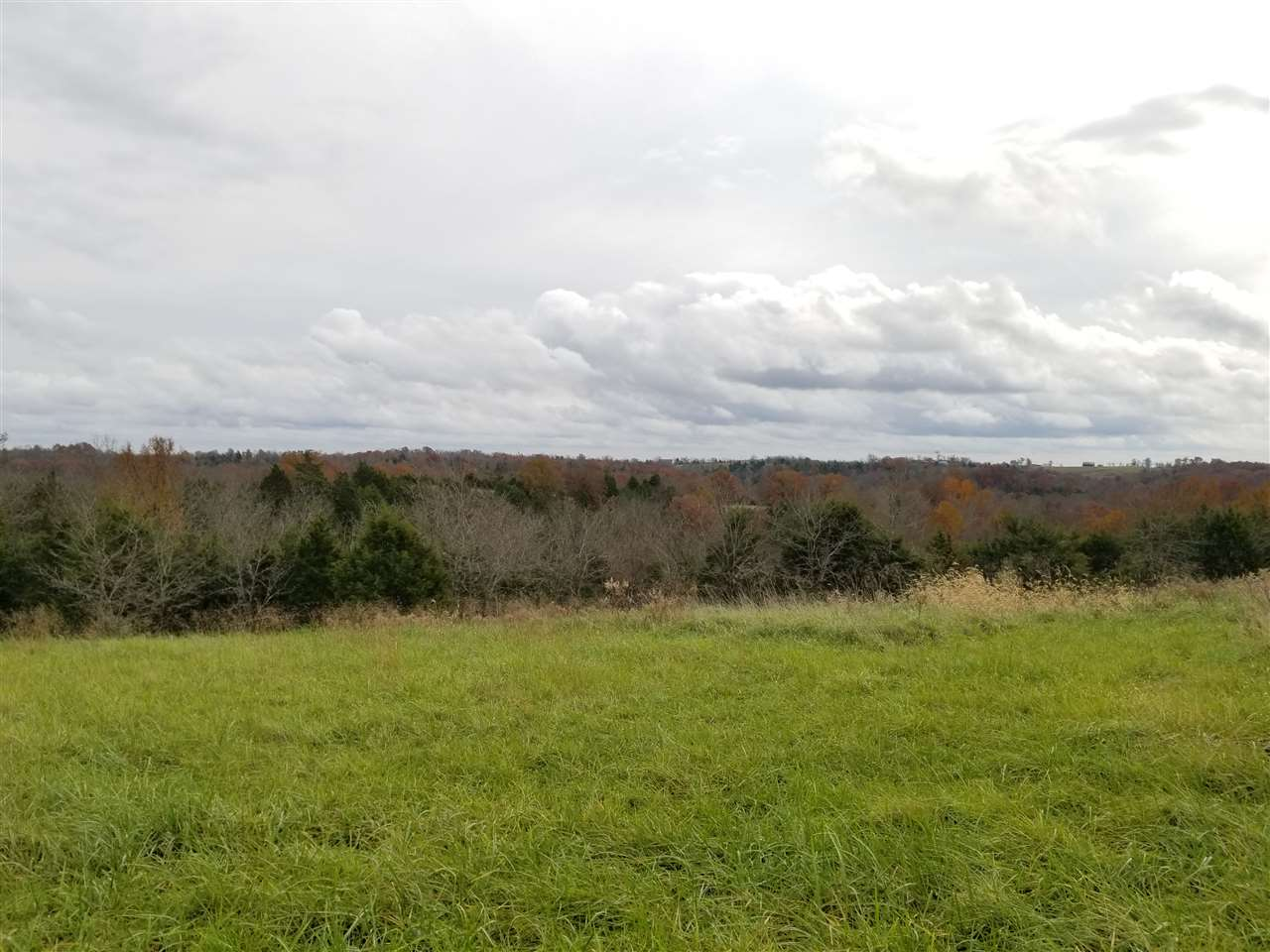 Looking for some land to hunt, fish, farm or build on? Then check out this 63 Acres on 2260 Hogg Ridge Road, Williamstown!