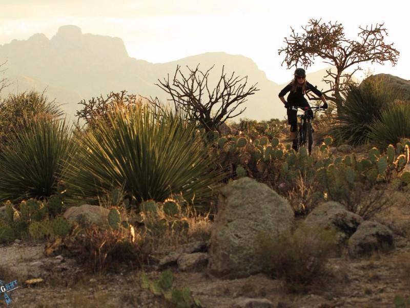 50-Year-Trail-Golder-Ranch-Tucson.jpg