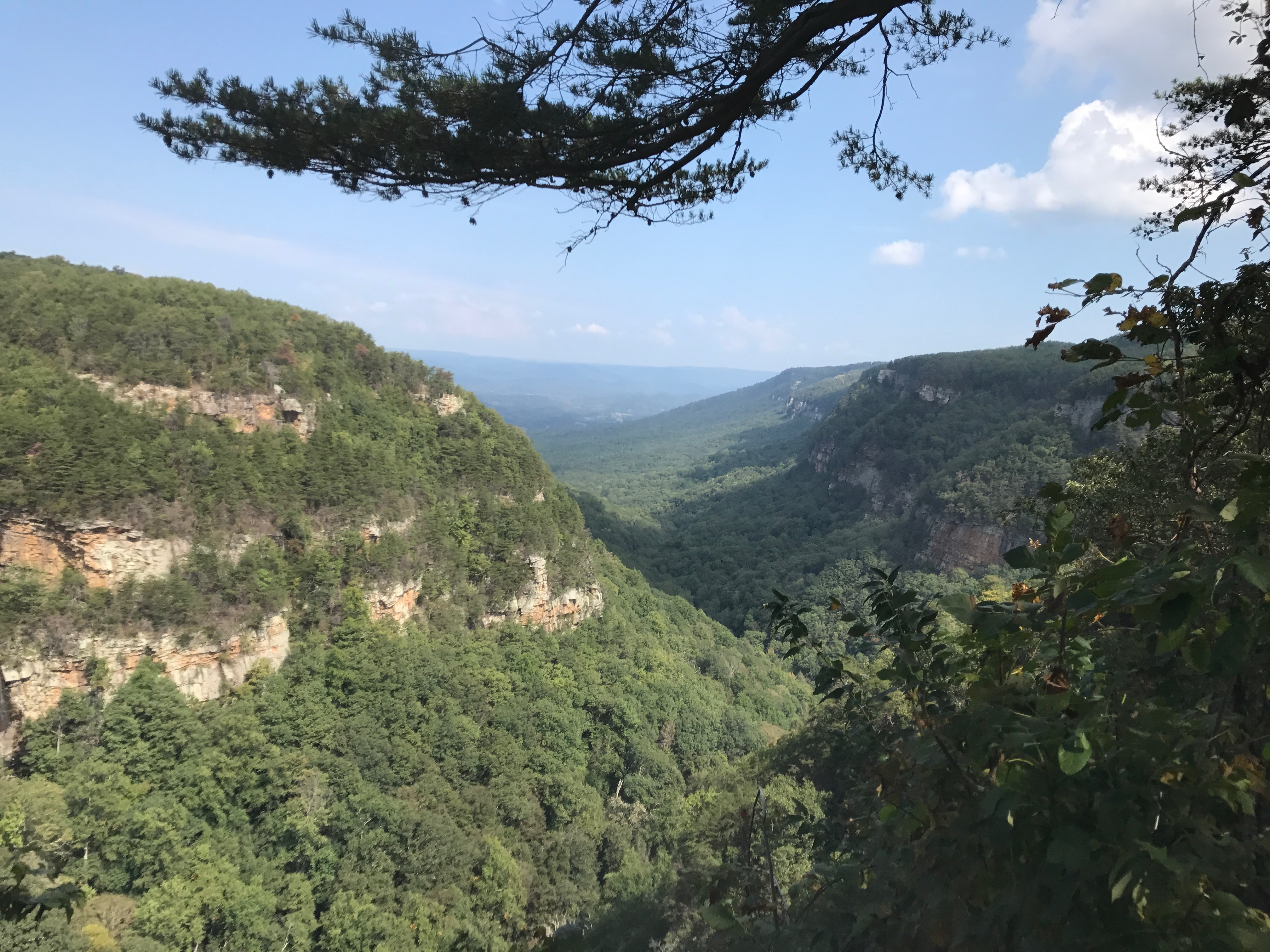 Moving To Chattanooga? Here Are Some Great Hikes Around Town