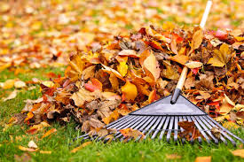 Why Fall Cleaning is More Important Than Spring Cleaning