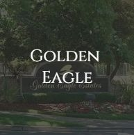 golden eagle (1).jpg