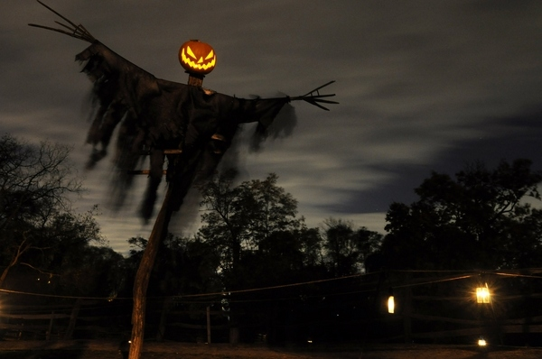scary-halloween-decorations-front-yard-decor-ideas.jpg