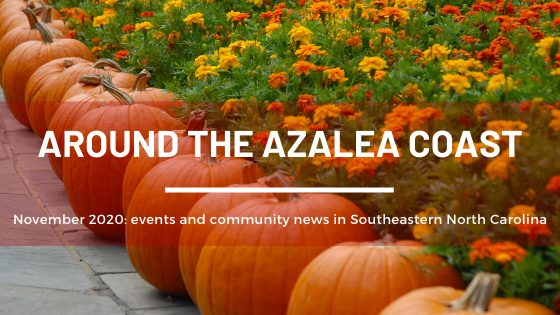Around Azalea Coast November banner.png