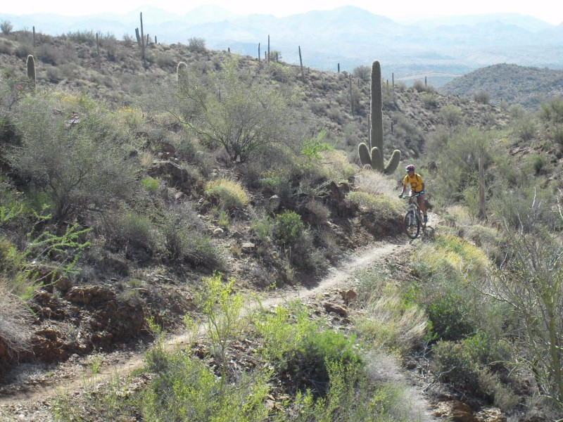 Black-Canyon-Trail-Phoenix.jpg