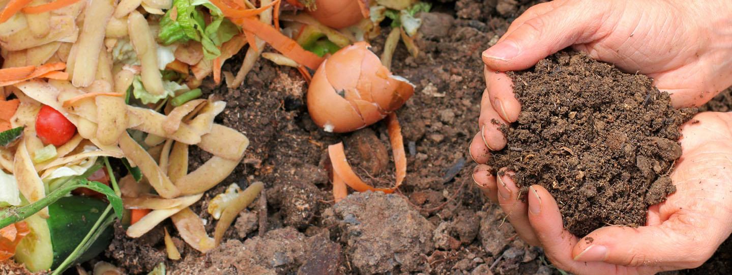 4 compost.jpg