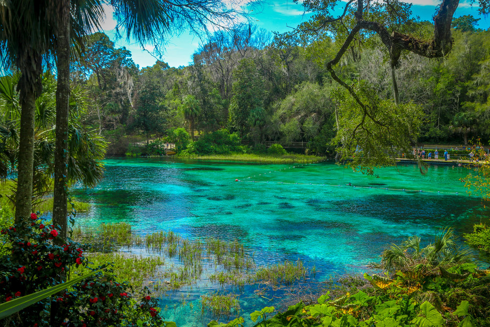 view of rainbow springs state park dunnellon florida