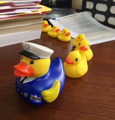 DucksPik.4.jpg