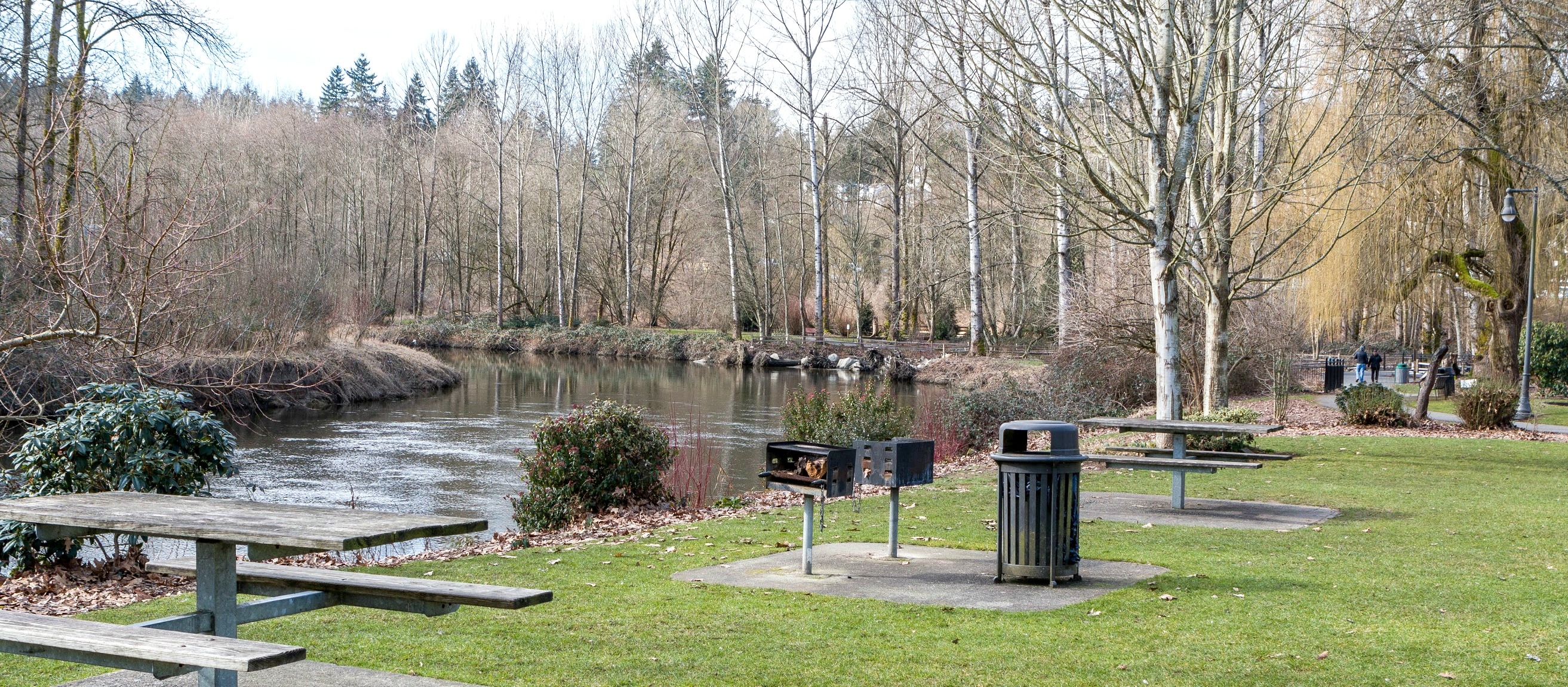 WindermereNorth_Bothell_Park.jpg