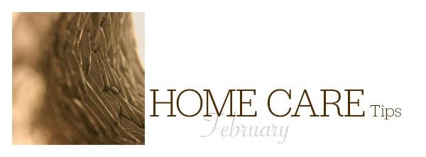 February Home Care Tips