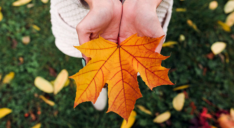 3 Reasons To Sell Your Home In The Fall