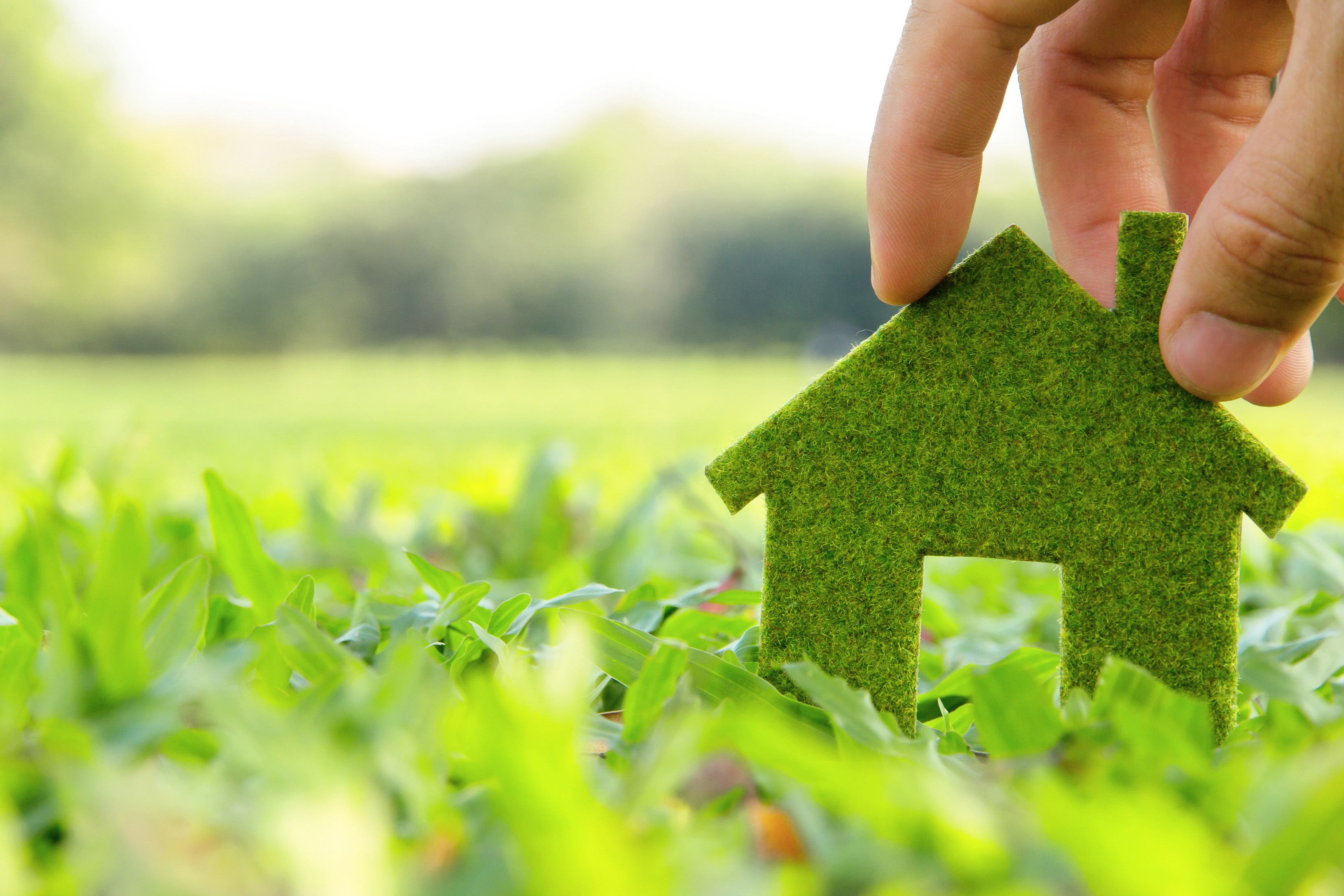 7 Eco-Friendly Updates for Your Home