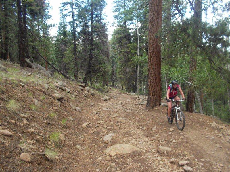 Schultz-Creek-Flagstaff.jpg