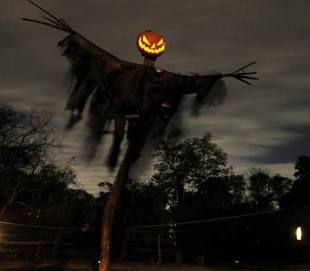 2019-10-24.ScaryPumpkinhead.jpg