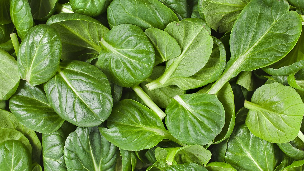 Food Tip of the Week: Spinach