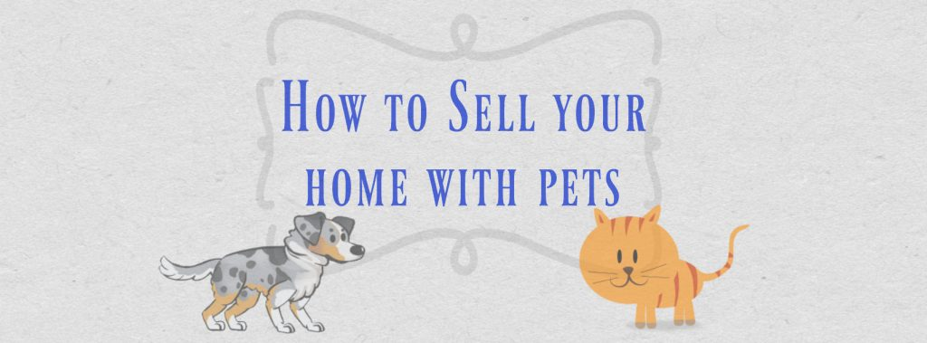 How-to-sell-your-home-with-pets-1024x379.jpg