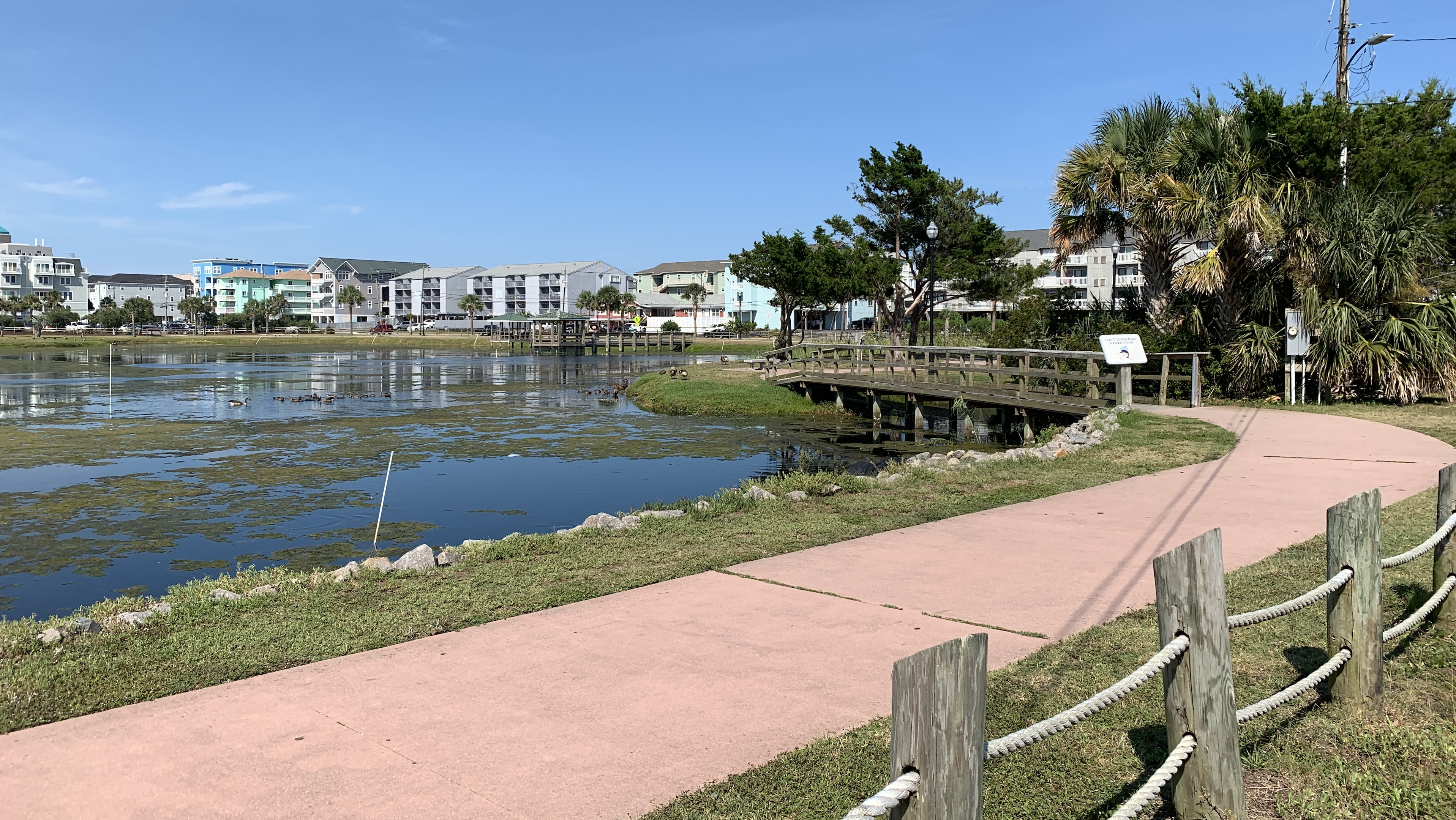 Amy CB Carolina Beach lake.JPG