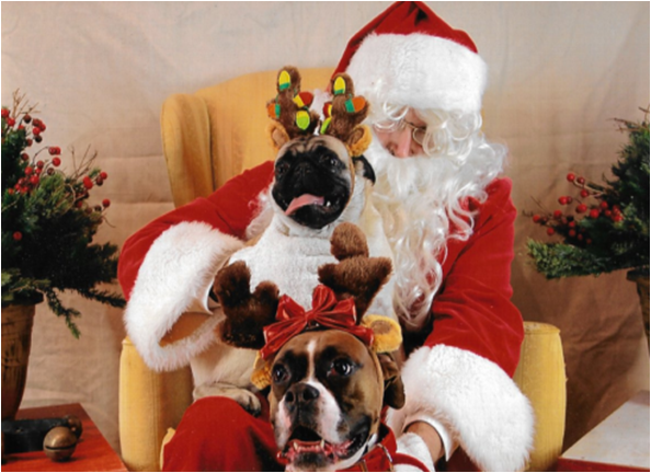 petphotoswithsanta.png