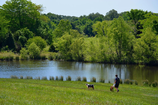 Things to Do in Memphis: Shelby Farms Park