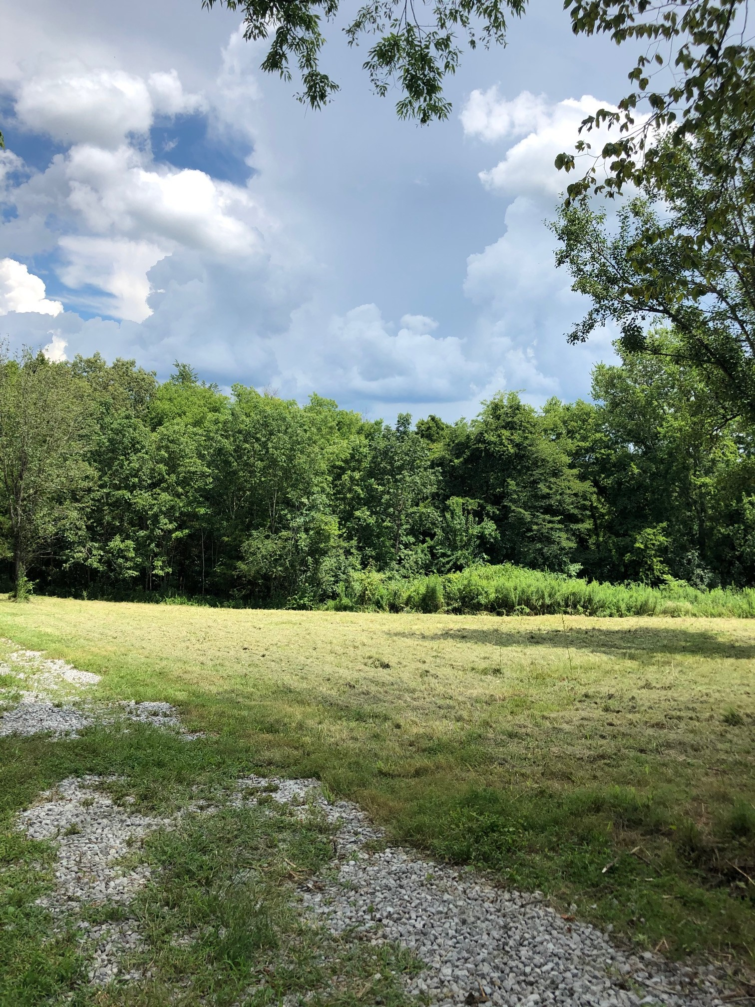 5.35 Acres In A Secluded, Country Setting With Mature Trees And Creek!  1187 Littleton Ranch Rd., Castalian Springs, TN.  37031