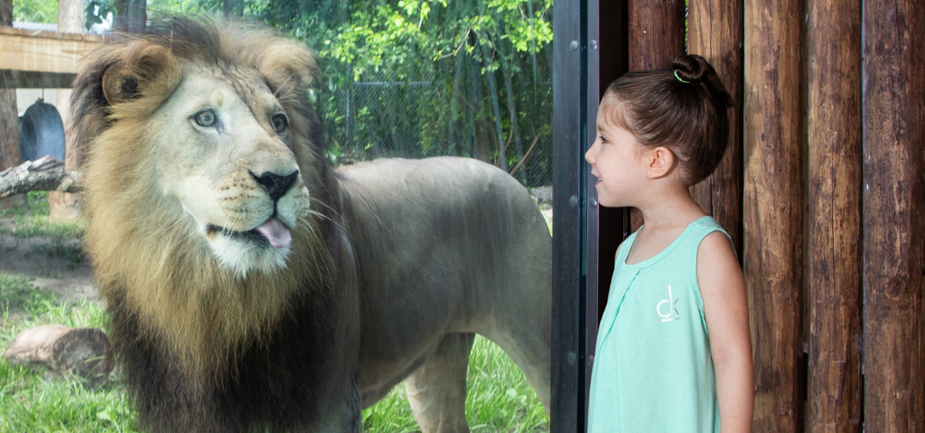 Things to do with kids in SWFL:
