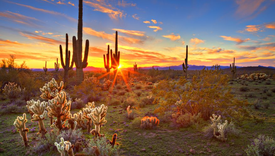 Tucson vs. Phoenix: Which Is Better for Your Retirement?