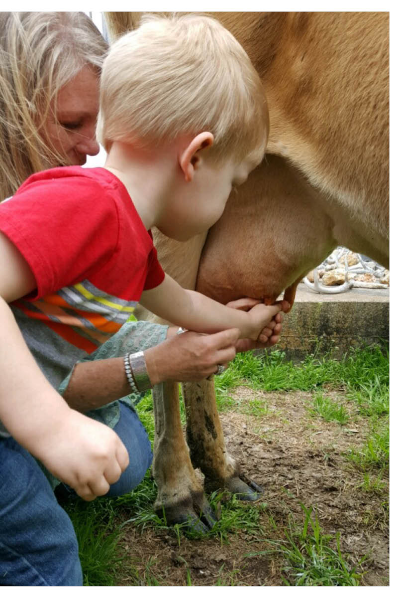 milking.jpg