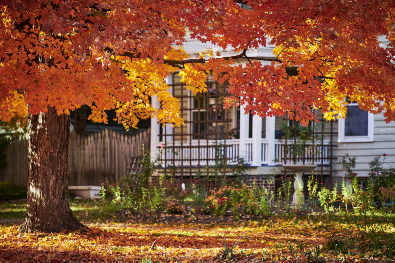 Fall Home Maintenance Guide