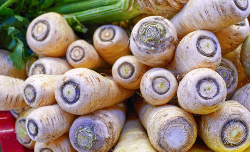 parsnips.jpg