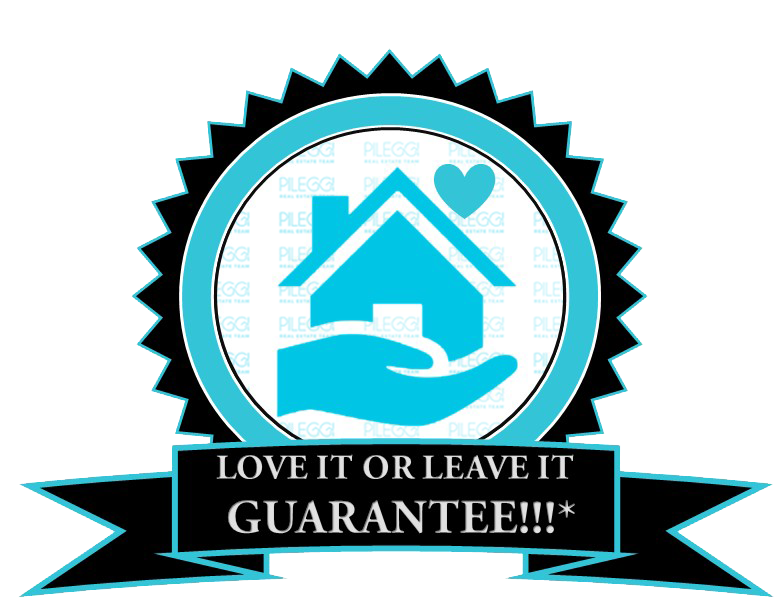 Love it or Leave it Logo.png