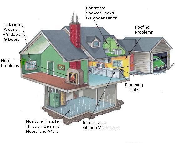 13 Ways to Reduce Moisture in Your Home