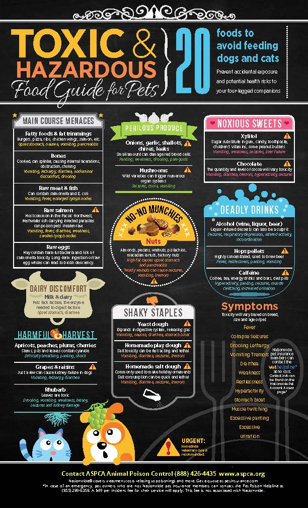 Toxic Food Guide for Pets Infographic.jpg