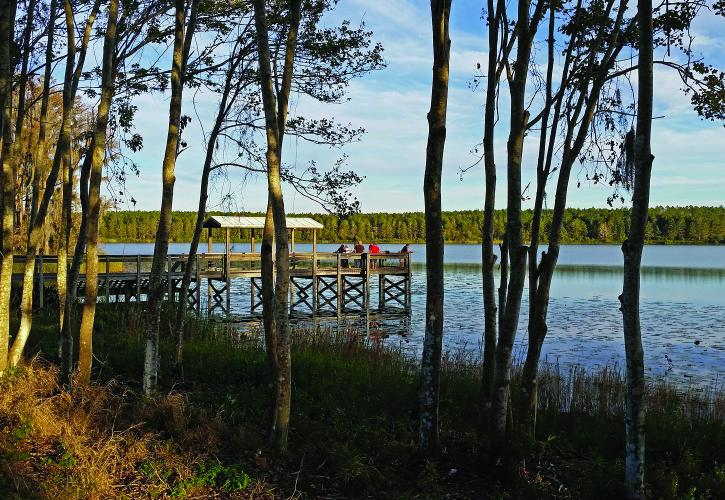 Lake_Louisa_State_Park_Celebrate_Winter_F_StS2VRVApjt7GKhD-lhGkOt18q0ABlZBh_cmyk_l.jpg