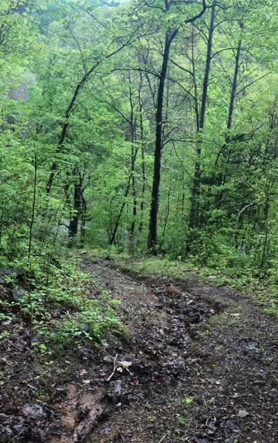 Rare Find, Beautiful Hilltop Views From This Wooded Lot With 7+ Acres!  3316 Patton Branch Rd., Goodlettsville, TN.  37072