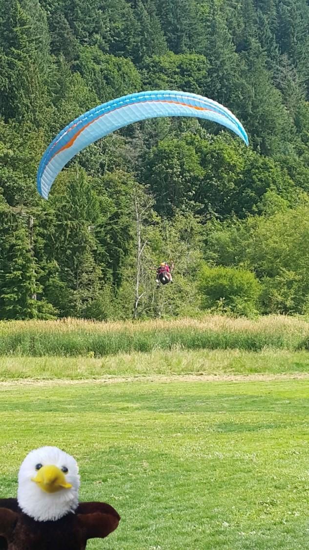 elliott and paragliding.jpg